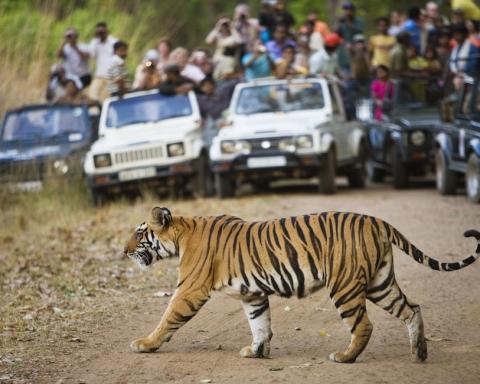 Ympäristöystävällinen matkailu