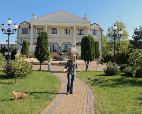 Tyttö ulkoiluttaa kissaa hotellin edessä.