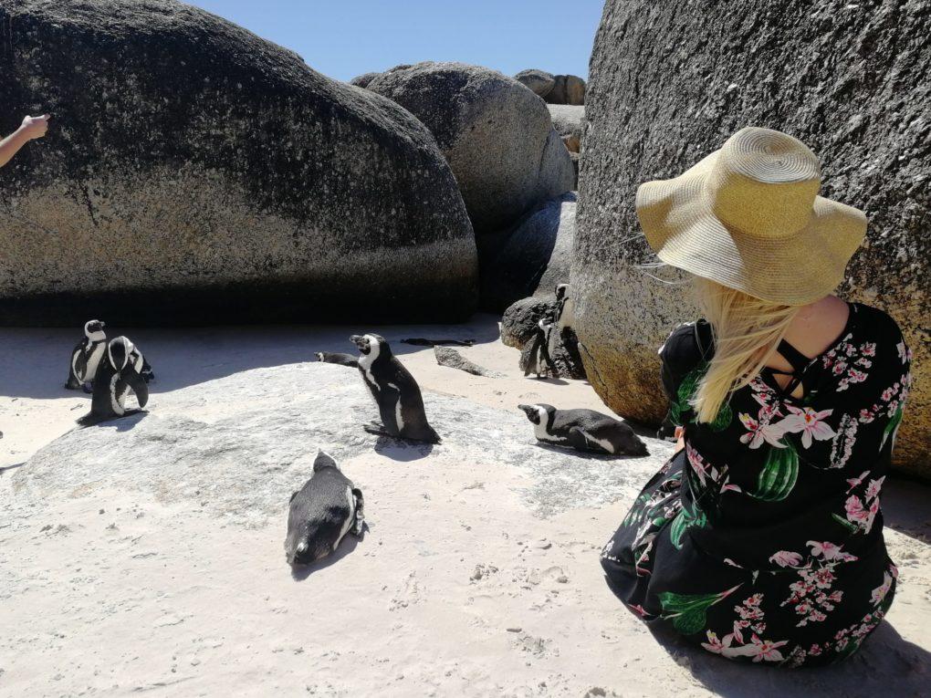 Tuuli Sariola pingviinien kanssa Etelä-Afrikassa.